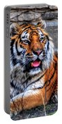 003 Siberian Tiger Portable Battery Charger