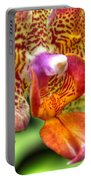004 Orchid Summer Show Buffalo Botanical Gardens Series Portable Battery Charger