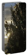 005 Peaking Winter Sunrise Portable Battery Charger