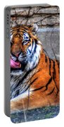 005 Siberian Tiger Portable Battery Charger