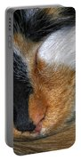 0053 Sleeping Cleo Portable Battery Charger