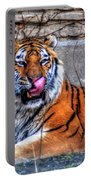 006 Siberian Tiger Portable Battery Charger