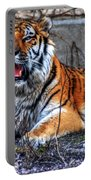 008 Siberian Tiger Portable Battery Charger