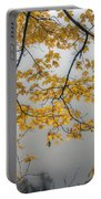 0135 Autumn Gold  Portable Battery Charger