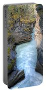 0142 Athabasca River Canyon Portable Battery Charger