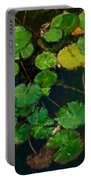0148-lily -  Expressionist Plein Air Sl Portable Battery Charger