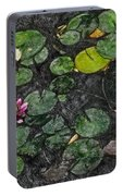 0148-lily -  Synchro Sl Portable Battery Charger