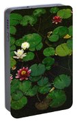 0151-lily -  Colored Photo 1 Portable Battery Charger