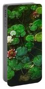 0151-lily - Academic Portable Battery Charger
