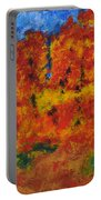 032 Abstract Landscape Portable Battery Charger