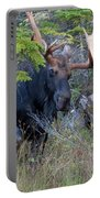 0339 Bull Moose 3 Portable Battery Charger