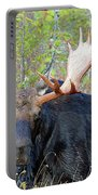 0341 Bull Moose Portable Battery Charger