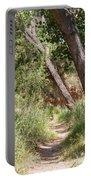 08.03.14 Palo Duro Canyon Rojo Grande Trail 8e Portable Battery Charger