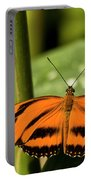 A Banded Orange Heliconian Butterfly Portable Battery Charger