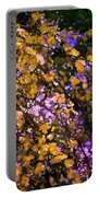 Abstract 276 Portable Battery Charger