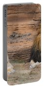 African Lion Couple Portable Battery Charger