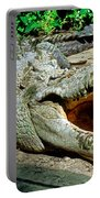 American Crocodile Portable Battery Charger