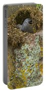 American Dipper In Nest   #1468 Portable Battery Charger