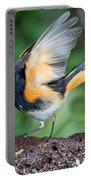American Redstart Portable Battery Charger