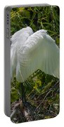 Angel Wings Portable Battery Charger