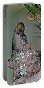 Annas Hummingbird Feeding Young Portable Battery Charger