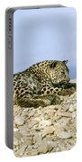 Arabian Leopard Panthera Pardus 1 Portable Battery Charger