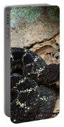 Arizona Black Rattlesnake Portable Battery Charger