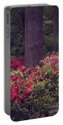 Around A Tree Portable Battery Charger