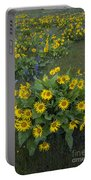 Arrowleaf Balsamroot And Lupine Portable Battery Charger