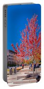Asheville North Carolina Portable Battery Charger