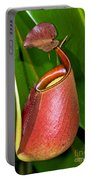 Asian Pitcher Plant Portable Battery Charger