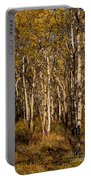 Aspen Forest In Fall Portable Battery Charger