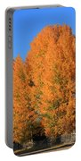 Dm5532-aspens In Fall Portable Battery Charger