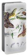 Australian Butterflies Portable Battery Charger