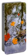 Autumn Portable Battery Charger by Daniel Janda