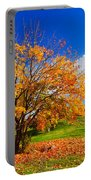 Autumn Fall Landscape Portable Battery Charger