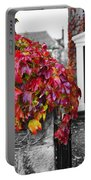 Autumn Ivy Portable Battery Charger