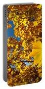 Autumn Splendor 9 Portable Battery Charger