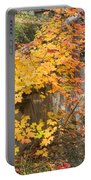 Autumn Steps Near Smalls Falls In Maine Portable Battery Charger