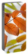 Autumn Upshot Portable Battery Charger