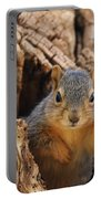 Baby Fox Squirrel Portable Battery Charger