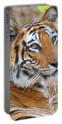 Bandhavgarh Tigeress Portable Battery Charger