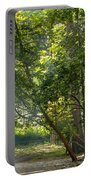 Beautiful Morning Portable Battery Charger