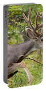 Beautiful Mule Deer Buck With Velvet Antler  Portable Battery Charger