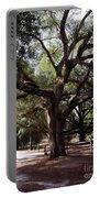 Beautiful Oak Portable Battery Charger