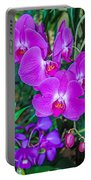 Beautiful Purple Orchid - Phalaenopsis Portable Battery Charger
