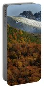 Beech Forest, Chile Portable Battery Charger