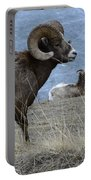 Big Horn Sheep 2 Portable Battery Charger
