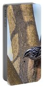 Black And White Warbler Portable Battery Charger