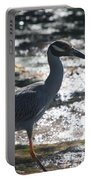 Black-crowned Night-heron Portable Battery Charger